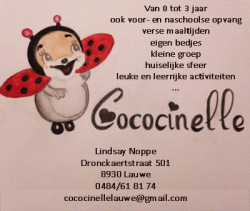 Afbeelding › Cococinelle